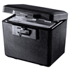 SentrySafe Fireproof Document Box with Key Lock - 0.61 Cubic Feet - Senior.com Security Safes