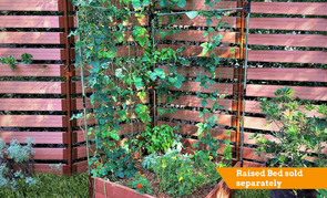 Frame It All Stack & Extend Veggie Wall - Expandable Grow Walls - Senior.com Veggie walls