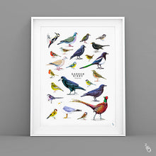 Load image into Gallery viewer, Bird art print