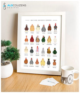 Chicken breeds poster