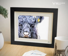Load image into Gallery viewer, Beltie cow - Oreo cow