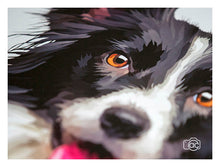 Load image into Gallery viewer, Border collie painting