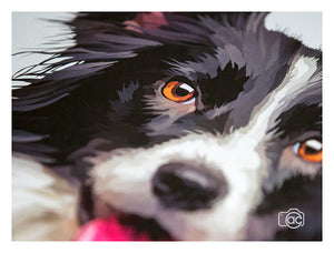 Border collie painting