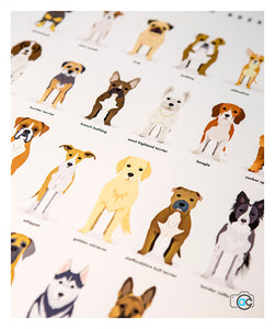 Dog breed poster