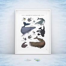 Load image into Gallery viewer, whales art print