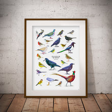 Load image into Gallery viewer, British Birds print
