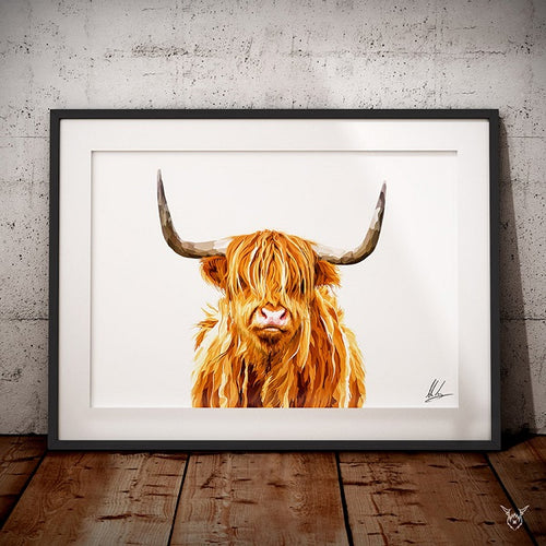Colourful Highland cow painting art print