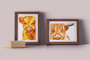 highland cow calf art print