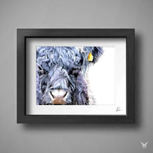 Load image into Gallery viewer, Belted galloway cattle