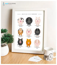 Load image into Gallery viewer, Pig breeds poster