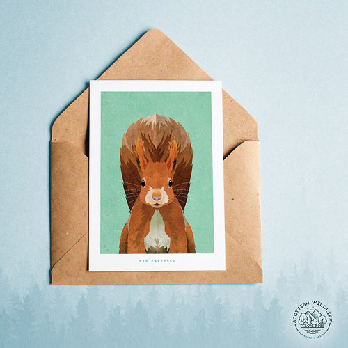 Red Squirrel art card print