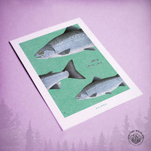 Load image into Gallery viewer, Salmon card art print
