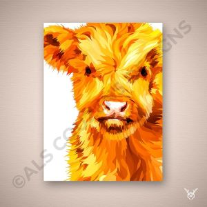 Highland cow baby coo
