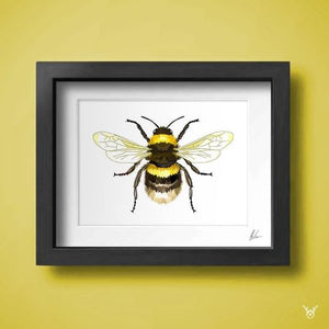 Honey Bee Art Print - British Bee Wall Art