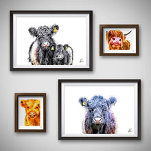 Load image into Gallery viewer, Belted Galloway art print