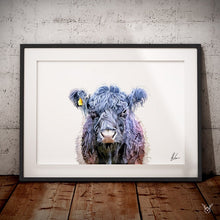 Load image into Gallery viewer, Belted Galloway Cattle Art Print
