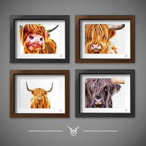 Colourful highland cow wall art prints