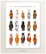 Load image into Gallery viewer, Pony art print