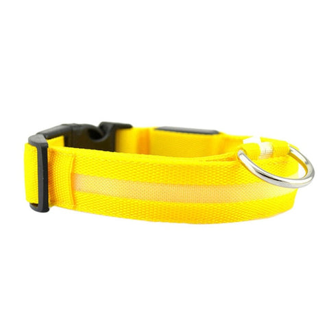 Dog Collar With LED Light - Yellow
