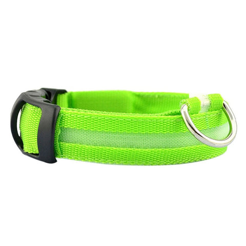 Dog Collar With LED Light - Green