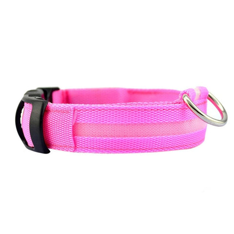 Dog Collar With LED Light - Pink