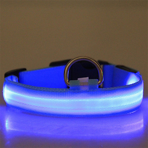 Dog Collar With LED Light - Blue