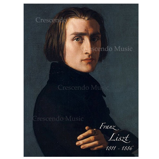 Franz Liszt Canvas Portrait w Gold Frame