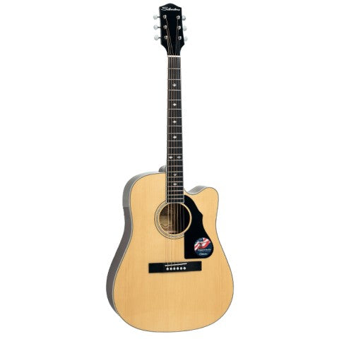 Silvertone Dreadnought Solid Top 710NA