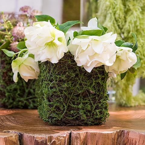 Hot Moss Planter Wedding Favor