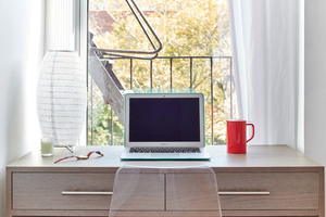 Which home-office desk owner are you?