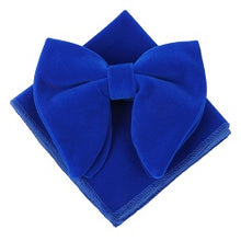 Load image into Gallery viewer, Retro Velvet Bow Ties