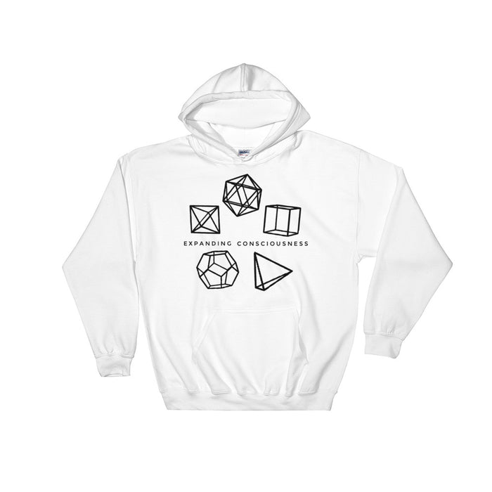 Platonic Solids Hooded Sweatshirt