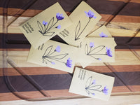 Kentucky Wildflower Seeds - handpainted seed packet
