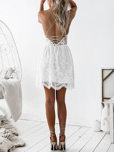 Sexy V Collar Lace Backless Strapless Fish Tail Skater Dress