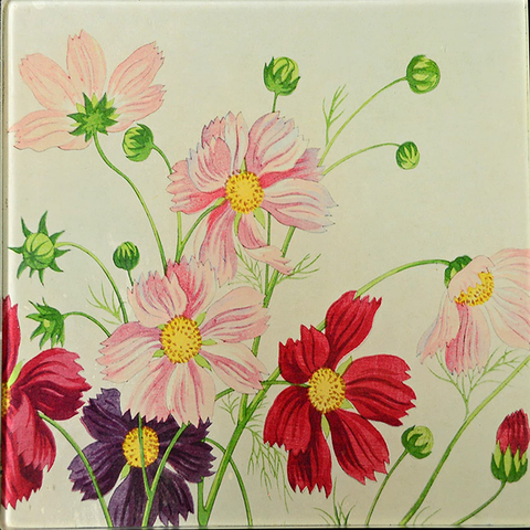 "6"" decoupage plate featuring Cosmos flowers"