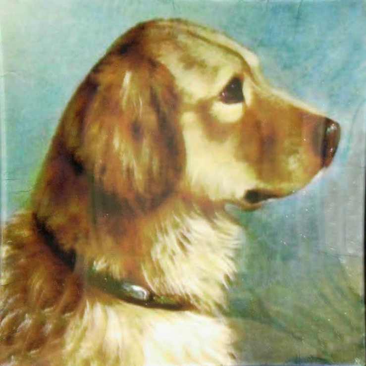 "6"" decoupage plate feauring a Golden Retriever"