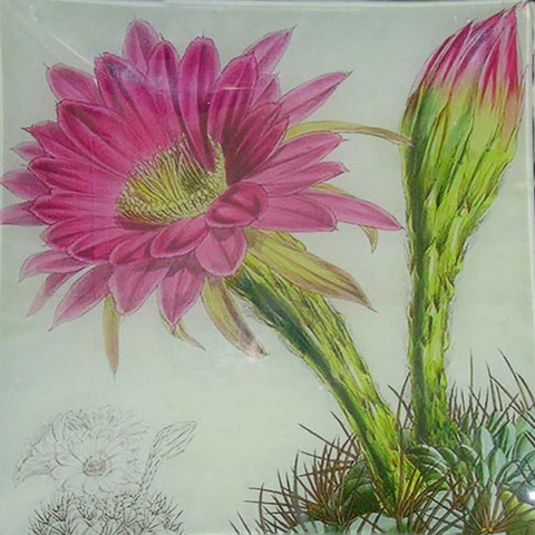 "8"" decoupage plate featuring a pink cactus flower"