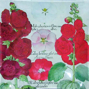 "8"" Plate - Hollyhocks"