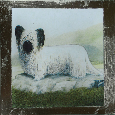 "8"" decoupage plate featuring a Skye Terrier with silver leaf border"