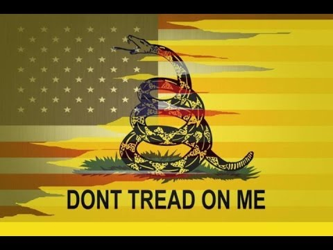 gadsden flag don't tread on me american usa