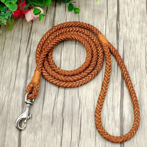 Rolled Leather Dog Leash For Small Medium Dogs