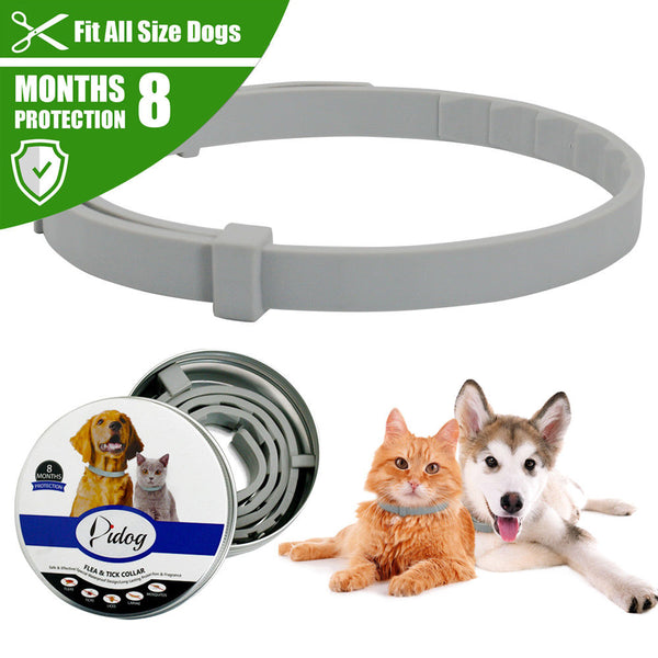 Anti Flea,Ticks & Mosquitoes Adjustable Pet Collar (8 Months Long-term Protection)