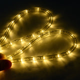 100' 2 Wires LED Decorative Rope Light