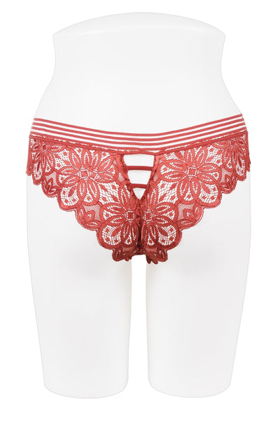 Ladies all lace bikini