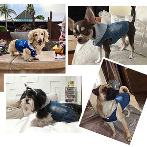 DC.PET Clothes Dog Jean Jacket Dog Hoodie Dog Denim Blue Vest Coat Shirt Dog Clothes for Small Medium Dogs (XXL, Grey hat) - Vancelette Global Art Acquisitions