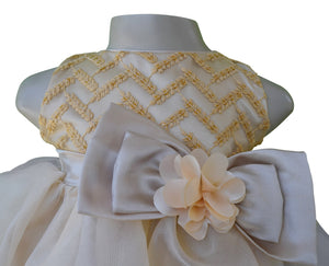 Baby dress_Faye Gold Chevron Embroidered Dress