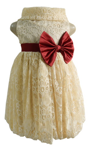 kids dress_Faye Champagne Lace Cowl Dress