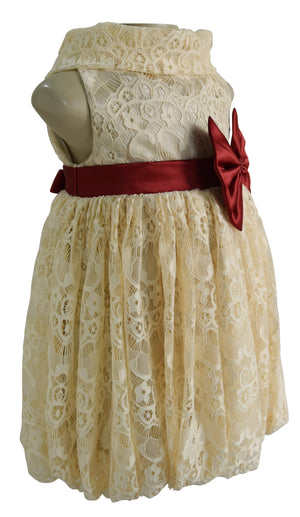 party dress for kids_Champagne Lace Cowl Dress