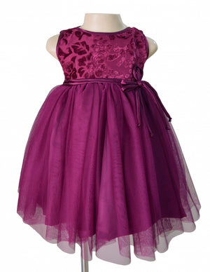 Faye Plum Velvet Party Dress