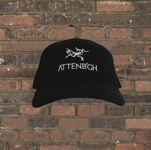 Attenborough Cap